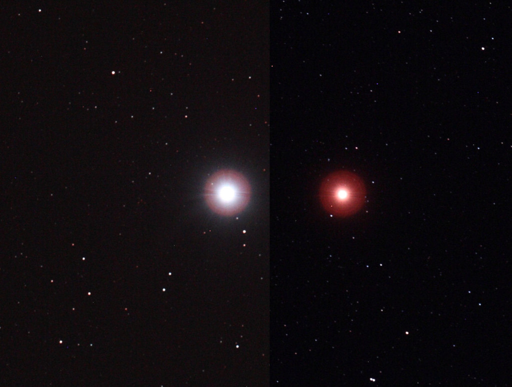 sirius and betelgeuse