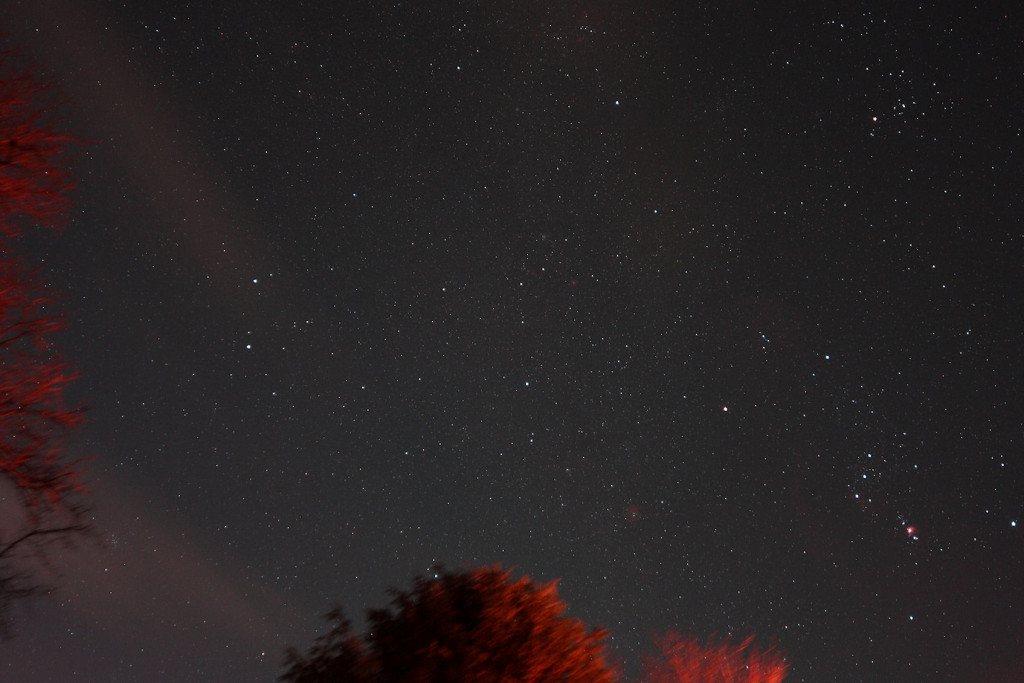 Orion Rising in the southeast sky